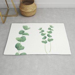 Eucalyptus polyanthemos leaves botanical illustration Rug
