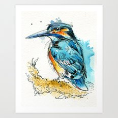 Regal Kingfisher Art Print