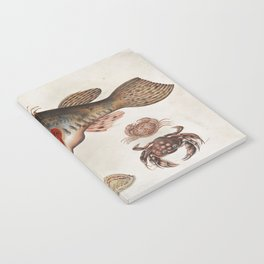 Vintage Fish and Crab Illustration by Maria Sibylla Merian, 1717 Notebook
