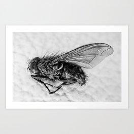 Microscopic death Art Print
