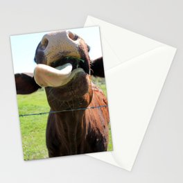 Can I Have a Lick? Stationery Cards