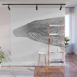 Grey Humpback whale portrait Wall Mural