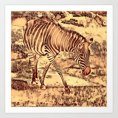 Animal ArtStudio -amazing Zebra Art Print