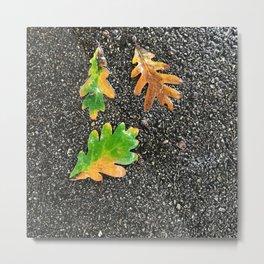 Rainy Leaves on Black Terrazzo background Metal Print