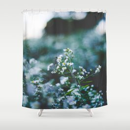 White Daisy In A Field Of Green Shower Curtain