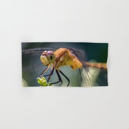Dragonfly Closeup Hand & Bath Towel