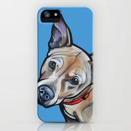 Fenway iPhone Case