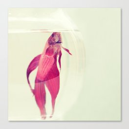 Red Fish. Canvas Print