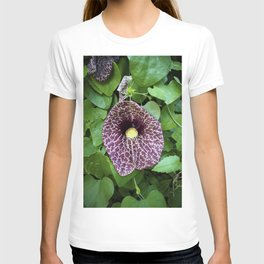 Reh-voh-lue-shun T-shirt
