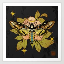 Death's Head Hawk Moth Art Print