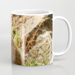 Marmot On A Rock Coffee Mug