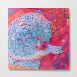 Popular Animals - Koala Metal Print