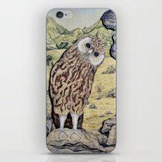 Laughing Owl  iPhone & iPod Skin
