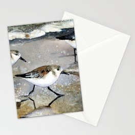 Sand Pipers Stationery Cards