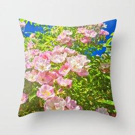 Sun Soaked Roses Throw Pillow