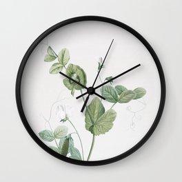Vintage White Pea Flower Illustration Wall Clock