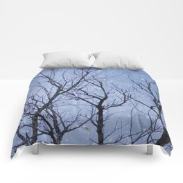 At Dusk Comforters