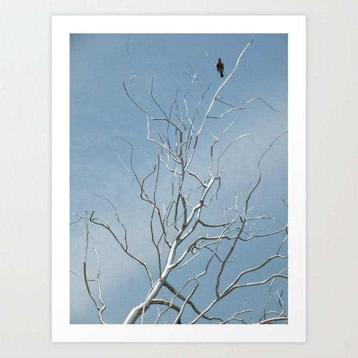 Fly Away Home Art Print