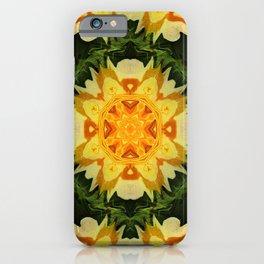 Pressed Roses... iPhone Case
