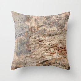 Renaissance Wall Throw Pillow