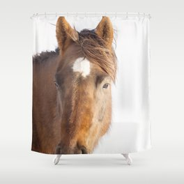 Modern Equestrian Photo Shower Curtain