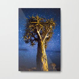 Quivertree at Night Metal Print