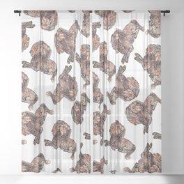 Dachshund Dog Sheer Curtain