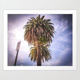 Urban Palm Art Print