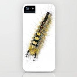 Rusty Tussock Moth Caterpillar iPhone Case