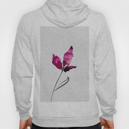 Floral Abstract No.2b by Kathy Morton Stanion Hoody
