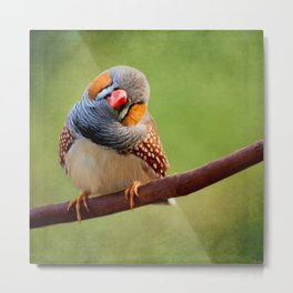 Bird Art - Change Your Opinions Metal Print