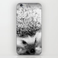 hedgehog iPhone & iPod Skins featuring hedgehog by Bunny Noir