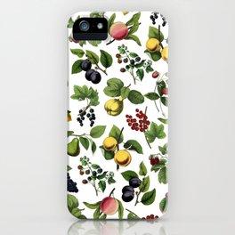fruit explosion iPhone Case