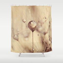 dandelion gold drop Shower Curtain