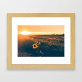 Saskatchewan Harvest Sunset Framed Art Print