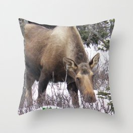 Roadside Browse Throw Pillow