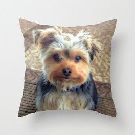 Always Thinking of You... | Yorkie | Dogs | Nadia Bonello Throw Pillow