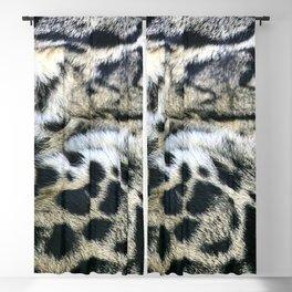 Clouded Leopard Blackout Curtain