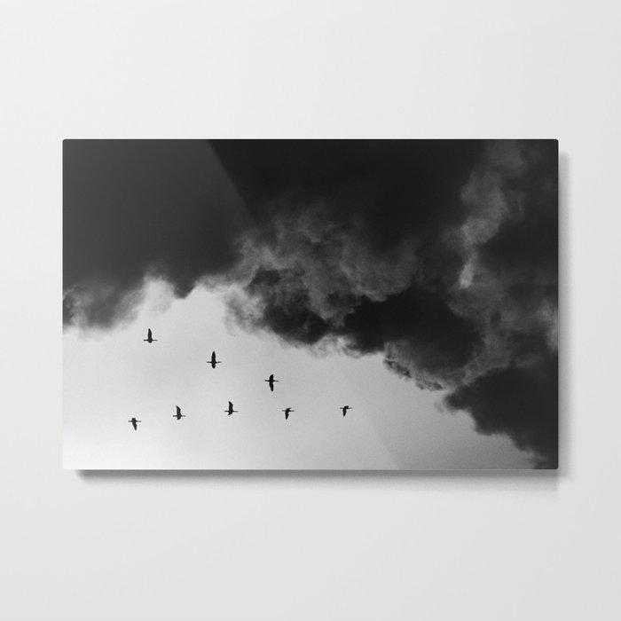 Bird migration Metal Print