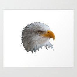 Curved eagle Art Print