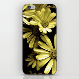 Yellow and Black iPhone Skin