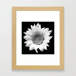 Sunflower In Black And White #decor #society6 #buyart Framed Art Print