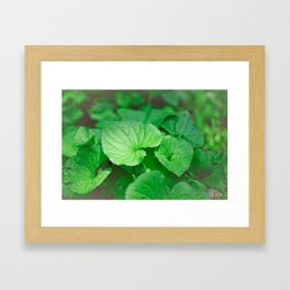 Heart-Shaped Leaves Framed Art Print