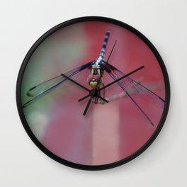 Fuzzy Face Wall Clock