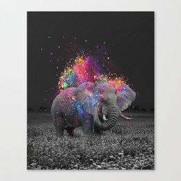 true colors II Canvas Print