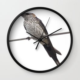 Red-Rumped Swallow Vector Background Removed Wall Clock