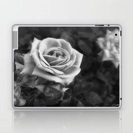 Pink Roses in Anzures 1 B&W Laptop & iPad Skin