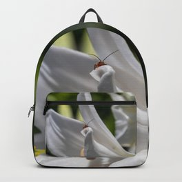 Red insect smiling on a lily Backpack