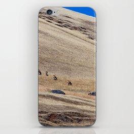 in the wild iPhone Skin