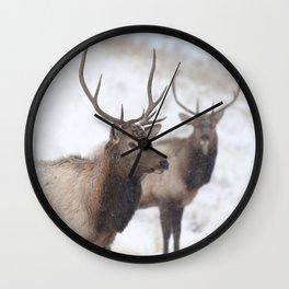 Watercolor Elk Juvenile 19, Estes Park, Colorado, Winter Paws Wall Clock